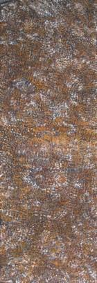 Click to view 'Bush Plum' by Rosie Kngwarreye